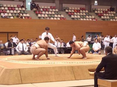 中堅 橋本.jpg