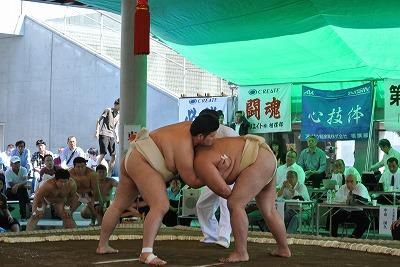 H26全日本橋本.jpg