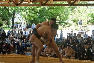 hashimoto55.jpg